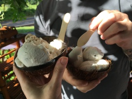 Who'd have thought we'd find an organic, vegan ice cream stand in the middle of the jungle???
